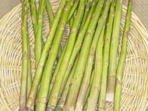 Asparagus uc 157 f2