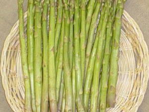 Asparagus uc 157 f1